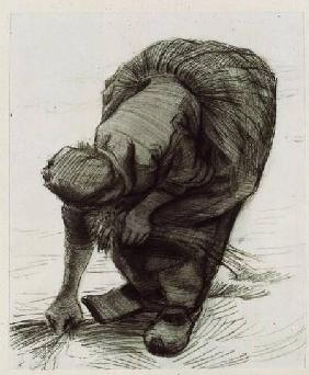 Peasant Woman Gleaning 1885