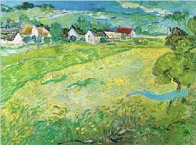 Sonnige Wiese bei Auvers, 1890 - (VV-876)