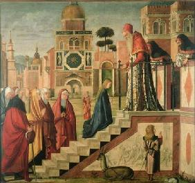 Presentation of Mary in the Temple, oil on canvas 1504-8