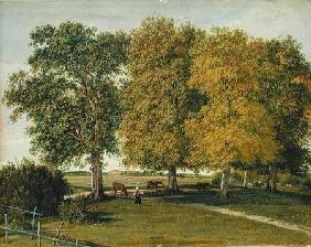 Herder with Cattle beneath Autumnal Trees c.1821  pa