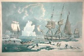 Northern Whale Fishery, engraved by E. Duncan 1829 our