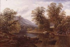 Landscape with a River and Cattle